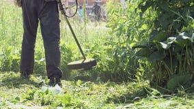 Lavoratore che falcia un'erba facendo uso di un regolatore all'aperto video d archivio