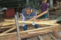 Lavoratore che prende legno fotografia stock