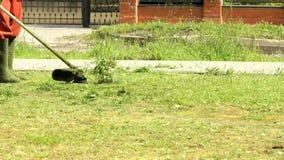 Lavoratore che taglia un'erba facendo uso di un regolatore all'aperto archivi video