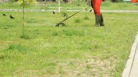 Lavoratore che taglia un'erba facendo uso di un regolatore all'aperto video d archivio