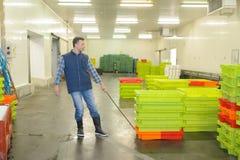 Lavoratore che tira le gabbie di plastica fotografia stock