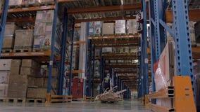Lavoratore con l'impilatore del camion di pallet della forcella nel gruppo di carico del magazzino di pacchetti stock footage