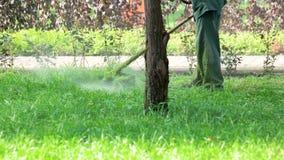 Lavoratore con un'erba di taglio del falciatore del regolatore del prato inglese della corda video d archivio