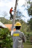 Lavoratore del riparatore del guardalinee dell'elettricista sul palo di potere elettrico della posta Immagine Stock Libera da Diritti