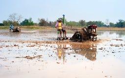 Lavoratore del riso Fotografia Stock
