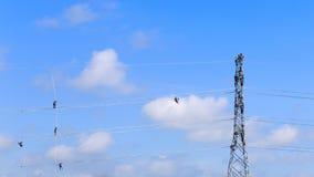 Lavoratore dell'elettricista sul lavoro rampicante sulla posta ad alta tensione Fotografie Stock Libere da Diritti