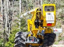 Lavoratore della contea che taglia gli alberi su una strada fotografia stock