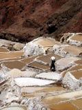 Lavoratore della miniera di sale, saline (Perù) Immagini Stock