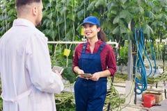 Lavoratore della piantagione che parla con scienziato Fotografie Stock Libere da Diritti