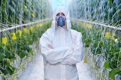 Lavoratore della piantagione in vestito protettivo Fotografia Stock