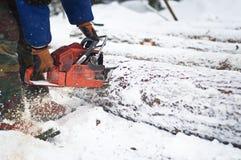 Lavoratore di industria del legname Fotografia Stock