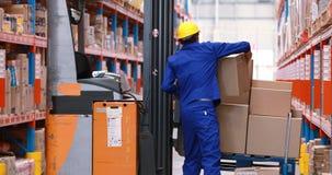 Lavoratore maschio del magazzino che sistema azione sul carrello elevatore a forcale archivi video