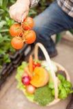 In lavoratore maschio esperto con alimento sano dentro Fotografia Stock Libera da Diritti