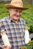 Lavoratore maturo con i prodotti lattier-caseario nella natura Fotografia Stock