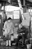 Lavoratori. Al mercato del pesce Stock Images