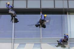 Lavoratori che appendono giù buiding per lavare le finestre Immagine Stock
