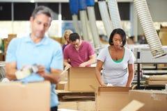 Lavoratori in magazzino che prepara le merci per la spedizione Immagini Stock