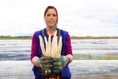 lavoratori nell'azienda agricola durante la raccolta dell'asparago bianco Fotografie Stock