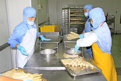 Lavoratori nella linea di produzione di trasformazione dei prodotti alimentari Immagini Stock Libere da Diritti