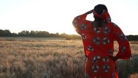 Lavoratrice agricola africana in vestiti tradizionali che stanno in un campo dei raccolti al tramonto o all'alba archivi video