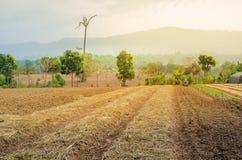 Lavorazione arata del terreno coltivabile del campo Immagini Stock Libere da Diritti