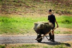 Lavoretto adolescente Fotografia Stock Libera da Diritti