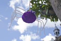 Lavori all'uncinetto il ragno Immagini Stock