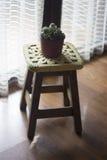 Lavori all'uncinetto la decorazione sopra un banco di legno con un cactus sulla cima Immagini Stock Libere da Diritti