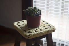 Lavori all'uncinetto la decorazione sopra un banco di legno con un cactus sulla cima Fotografia Stock