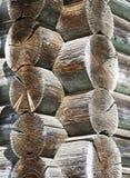 Lavoro 1 del legname immagini stock