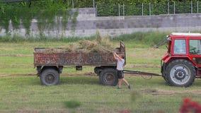 Lavoro agricolo di estate stock footage
