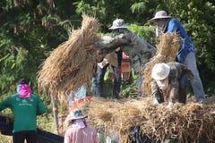 Lavoro agricolo e prodotto agricolo fotografie stock libere da diritti