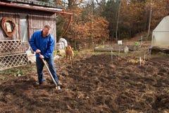 Lavoro agricolo Ritratto di un suolo di scavatura dell'uomo con la pala L'autunno pulisce Un agricoltore che prepara il terreno p Fotografia Stock Libera da Diritti
