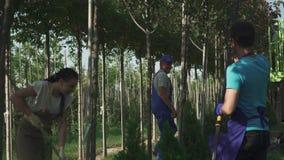 Lavoro dei giardinieri nel giardino archivi video