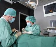 lavoro del dentista Immagini Stock Libere da Diritti