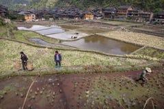Lavoro del giacimento della primavera degli agricoltori cinesi dal paesino di montagna Immagine Stock Libera da Diritti