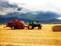 Lavoro dell'azienda agricola di sera prima della tempesta Immagine Stock