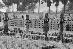 Lavoro della donna in Brick-field indiano Immagine Stock