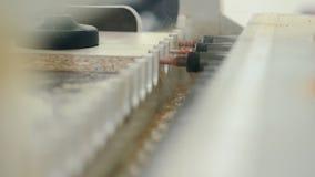Lavoro della macchina per la lavorazione del legno video d archivio