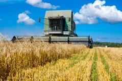 Lavoro della mietitrice nel campo per raccogliere grano Fotografia Stock