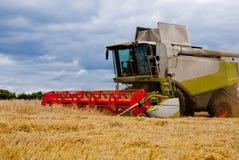 Lavoro della mietitrice nel campo per raccogliere grano immagine stock