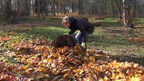 Lavoro di autunno del giardiniere della ragazza stock footage
