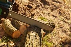 Lavoro di autunno Preparazione di combustibile per l'inverno Taglio dell'acacia fotografie stock