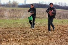 Lavoro di campo nelle zone rurali di Transcarpathia nella primavera Fotografie Stock