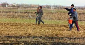Lavoro di campo nelle zone rurali di Transcarpathia nella primavera Fotografia Stock