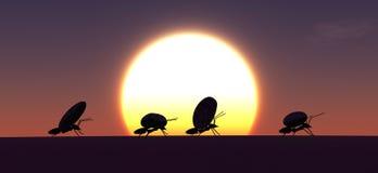 lavoro di concetto, gruppo delle formiche Fotografie Stock Libere da Diritti