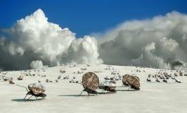 lavoro di concetto, gruppo delle formiche Fotografia Stock Libera da Diritti
