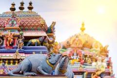 Lavoro di dettaglio in Gopuram, tempio indù Kapaleeshwarar , Chennai, T Immagini Stock Libere da Diritti