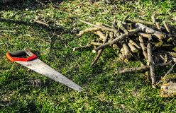 Lavoro di giardinaggio La mano ha visto con i resti rossi della maniglia su erba verde accanto ai rami tagliati fotografia stock libera da diritti