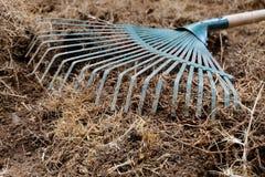 Lavoro di iarda, suolo della preparazione in giardino con il rastrello Fotografia Stock